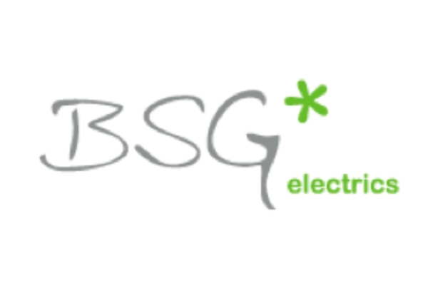 Logo BSG*
